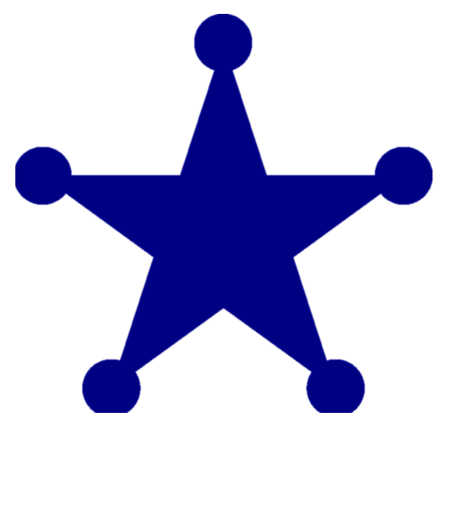 Cyber Security star icon